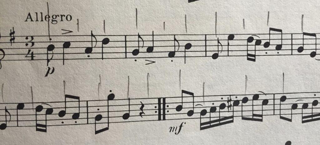rhythms visually organized - vertical lines show beats
